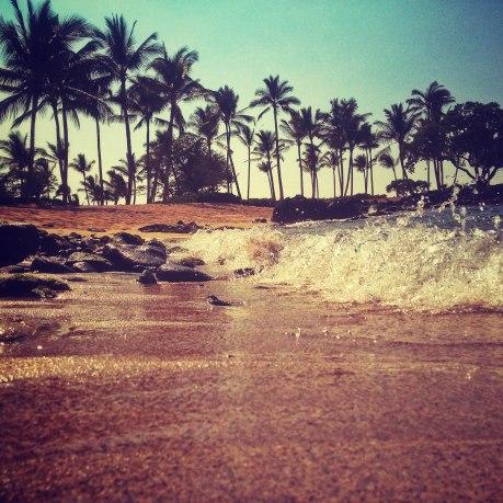 kona_hawaii_2013-11